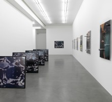 Installation View of Josephine Pryde, NIGHT OUT, Simon Lee Gallery, London. 2012-10-04