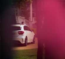 MB_Paparazzi. Photo ©Lina Grün