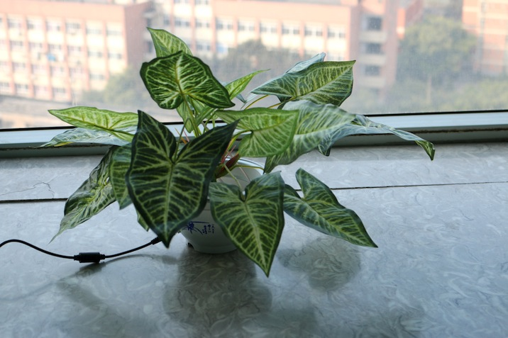 """Image 05: Tully Arnot """"Nervous Plant"""" (2016), artificial plant, microcontroller, servo motor, electronics, light sensor, dimensions variable Courtesy the artist. Link to video"""