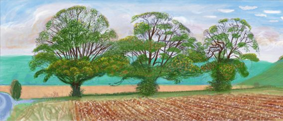 Hockney. Exhibitions.