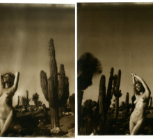 Kate Bellm - Anna Becoming A Pink Cactus, 2014