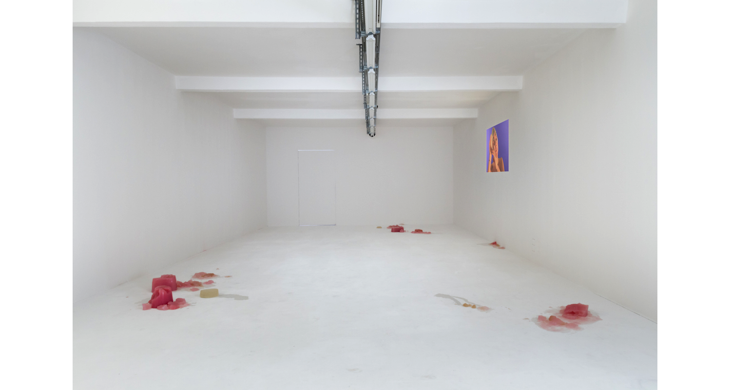 """Installation View, """"the new liquid model"""" DUVE Berlin, 2017. Image: Courtesy of the artists and Naomi Bisley."""