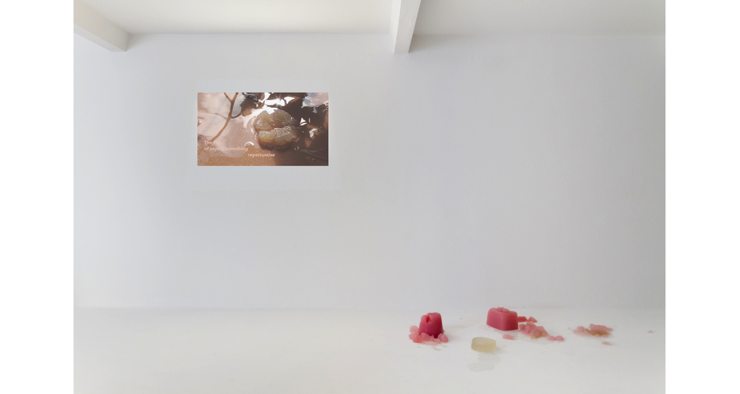 """InstallationJala Wahid, """"I am a Charm"""" 2017. Installation View, """"the new liquid model"""" DUVE Berlin, 2017. Image: Courtesy of the artists and Naomi Bisley. View, """"The New liquid Model"""" DUVE Berlin. Image: Courtesy of the artists and Naomi Bisley."""