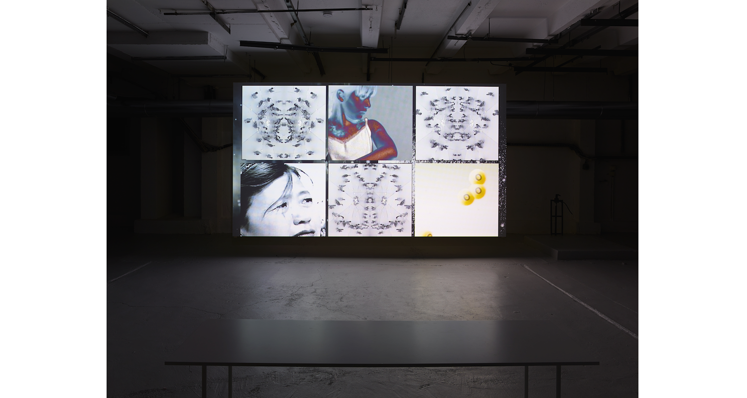 James Richards & Leslie Thorntorn Crossing, 2016. Image: Courtesy of the artists and Julia Stoschek Collection, Berlin. Photo: Simon Vogel