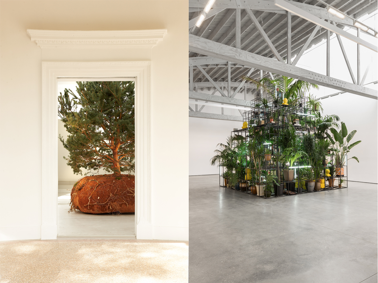 Why Are Artists So Obsessed With Plants Sleek Magazine