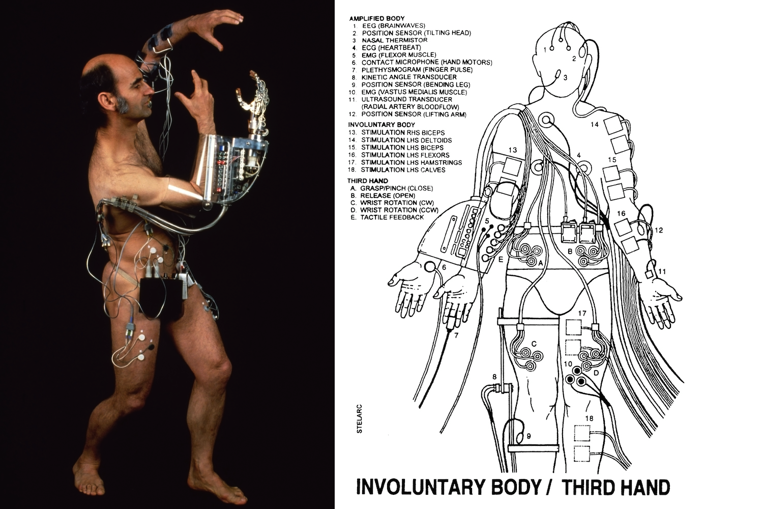 Redefining The Human Body As Meat Metal And Code An Interview With Stelarc Sleek Magazine